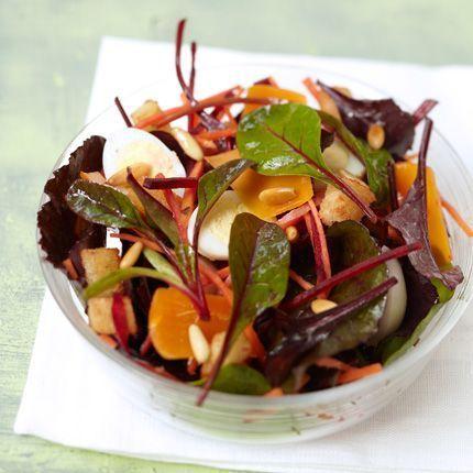 2011-04/salade-printaniere-de-jeunes-pousses-797aaf52266d9c3aae66e71371dad00575cfec67.jpg