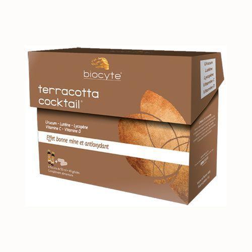 2012-08/terracota-cocktail-biocyte-96b8624bff1450b475eb8640ad4e1cebb4ef91f1.jpg