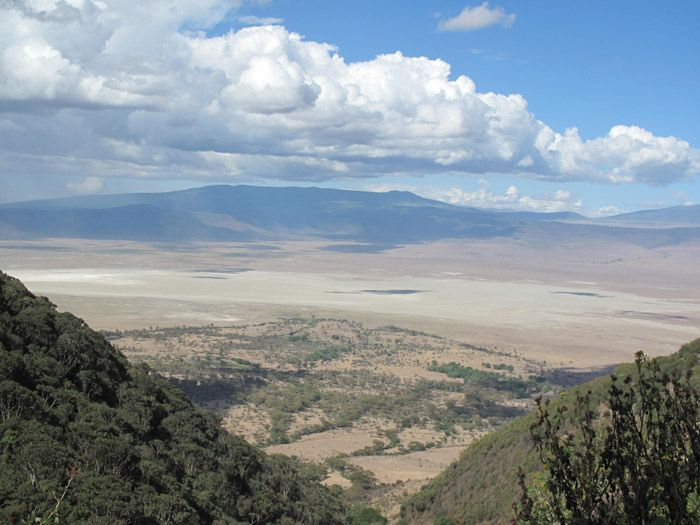 2015-04/le-cratere-du-ngorongoro-vu-d-en-haut-e5fa68300519583458df2d4abc17c9e7aeb2029f.jpg