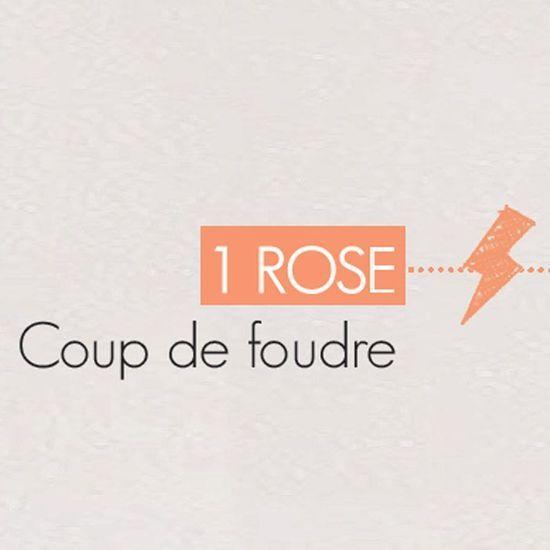 2016-02/une-rose-0a53323e7ed5d4e14c2cdf0bfafe3f291fa6d202.jpg
