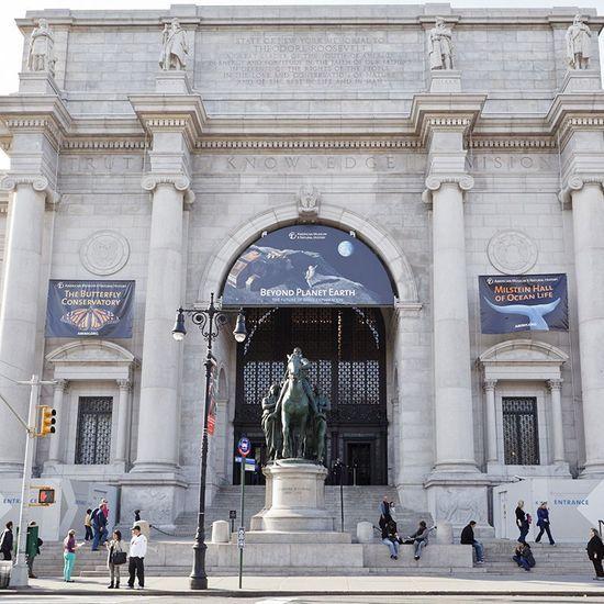 2020-07/american-museum-of-natural-history.jpg