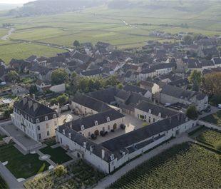 Dali-château-Pommard
