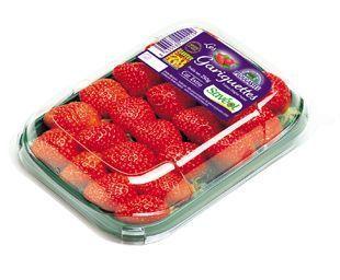 barquette-fraises