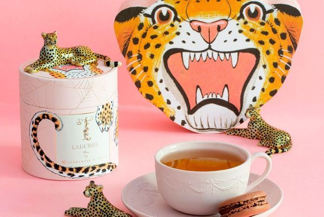 Le coffret de thé Charlotte Olympia x Ladurée