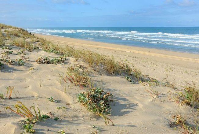La plage du Truc Vert à Piraillan