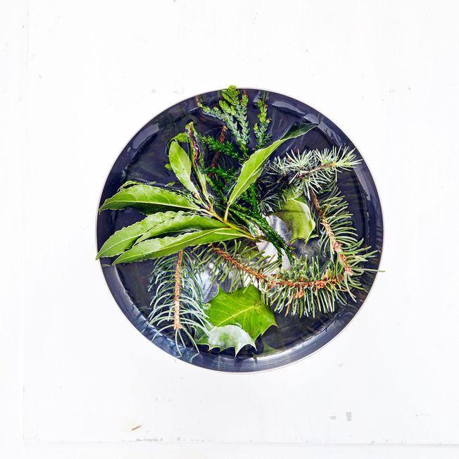 Un bol en inox rempi d'eau et de branches d'arbre.