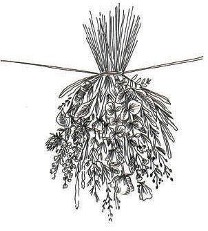 Le dessin d'un bouquet de fleurs tête en bas.
