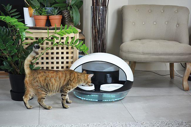 Le distributeur pour chat Catspad.