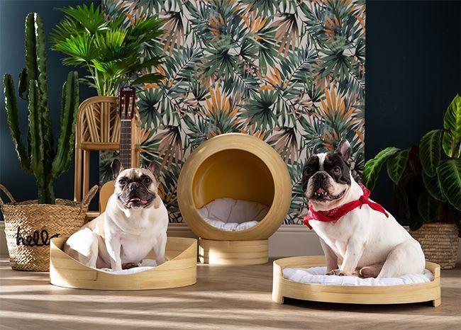La Pets Design Collection de Miliboo meubles pour animaux chiens et chats.