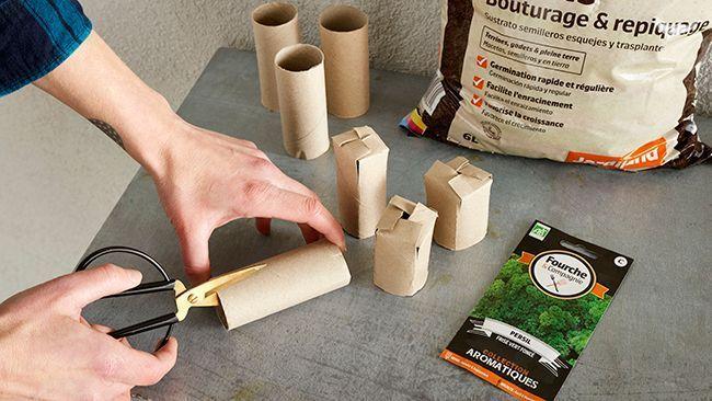 Des rouleaux de toilette pour faire des semis.