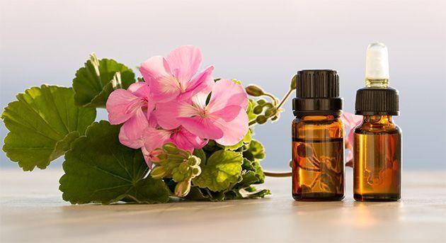 De l'huile essentielle de géranium rosat pour mincir.