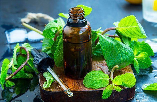 L'huile essentielle de menthe poivrée pour mincir.