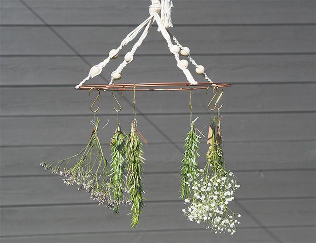 Un séchoir à plantes naturel.