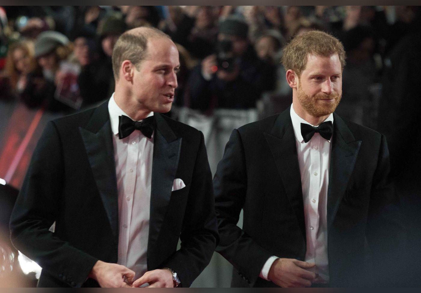 Les princes William et Harry n'ont parlé que d'une seule chose après l'interview avec Oprah Winfrey