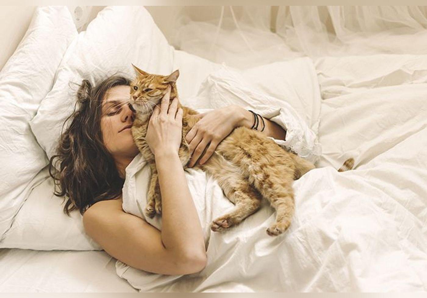 Votre chat vous réveille la nuit ? Voici la solution pour ne plus être dérangé durant votre sommeil et limiter son activité nocturne