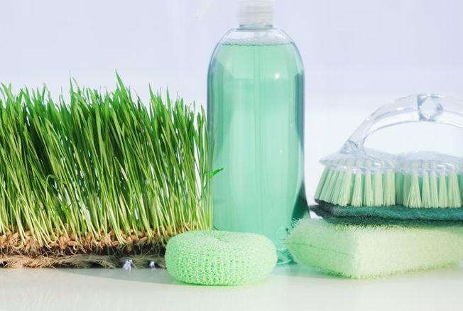Ménage écolo : notre sélection de produits green