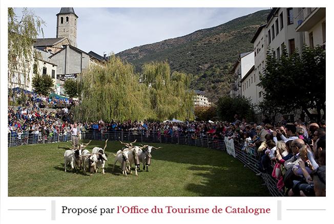 Catalogne, destination festival
