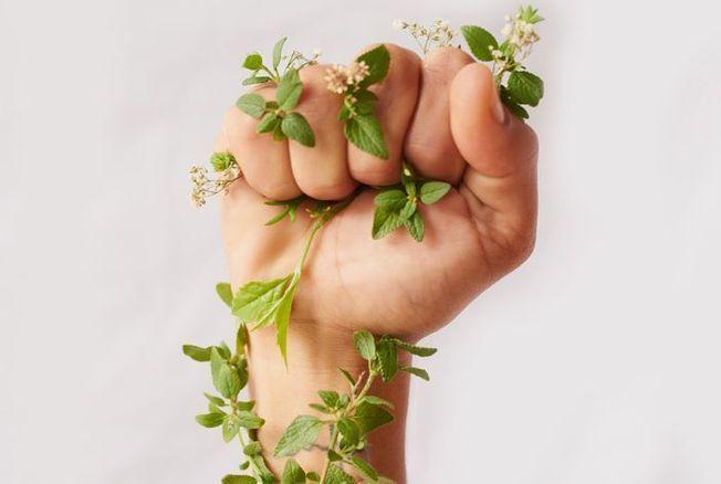 Les 9 produits éco-responsables préférés des Français