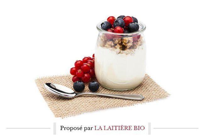 À la découverte des secrets du yaourt bio